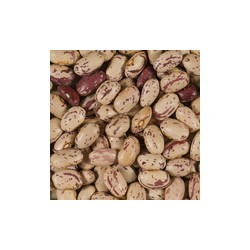 TERSOL HARICOT COCO ROSE 1KG